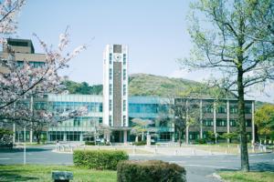 797学部と大学院の関係